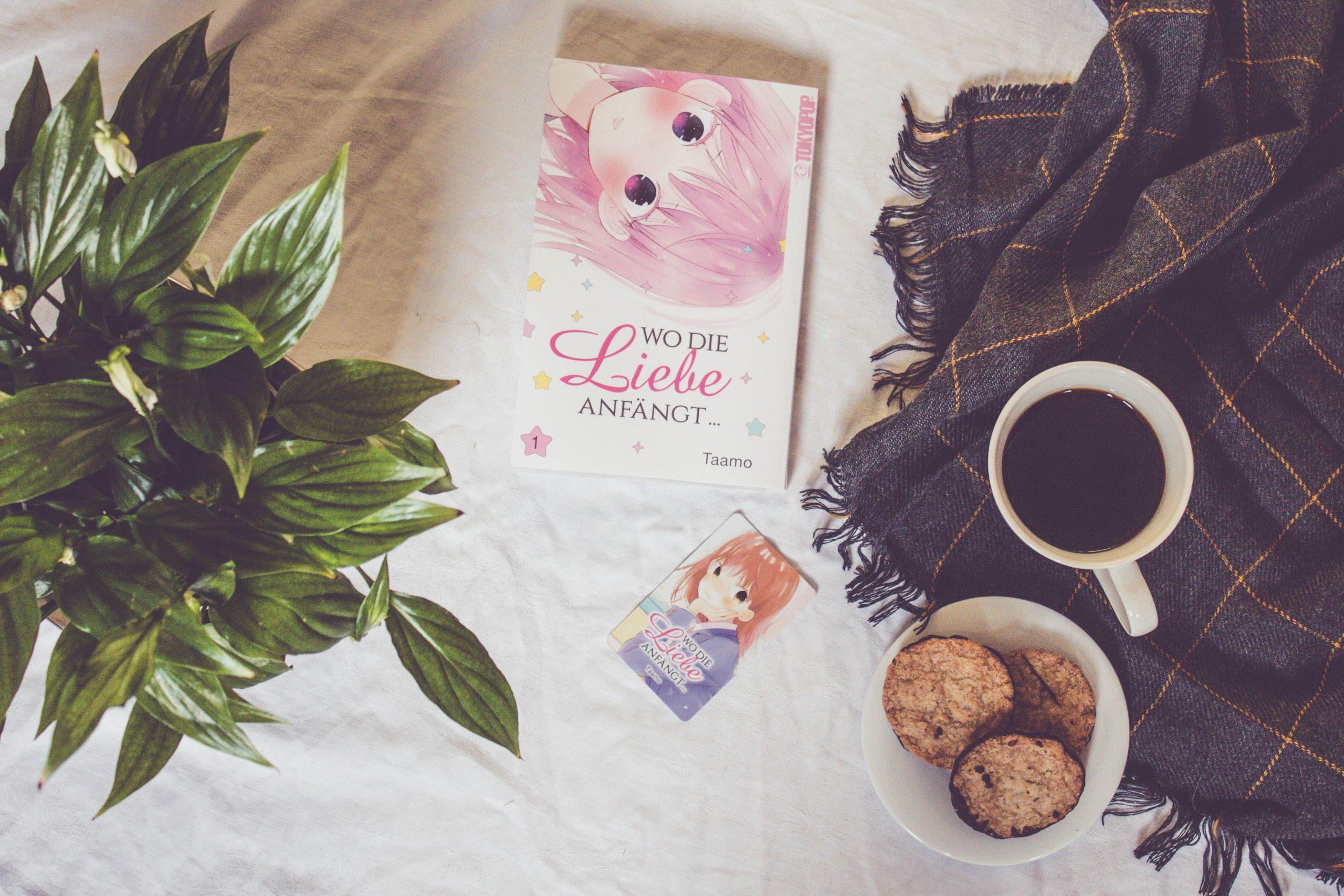 Wo die Liebe Anfängt - Manga Rezension