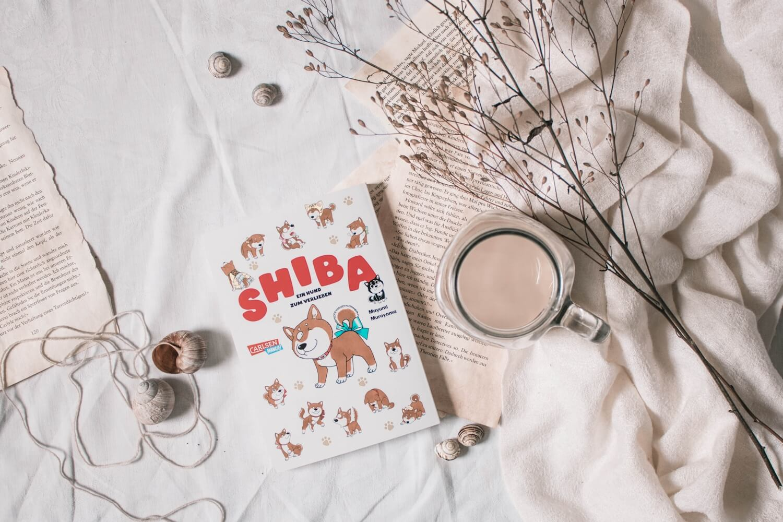 Shiba - Ein Hund zum Verlieben